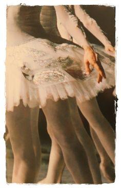 Gorgeous tutus and allongé
