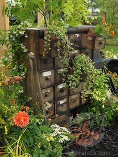 Old chest of drawers in the garden.
