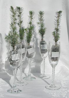 /Green-Wedding-Favors
