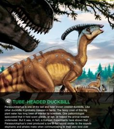 Ultimate Dinopedia app from National Geographic.  If he ever gets interested in dinosaurs...