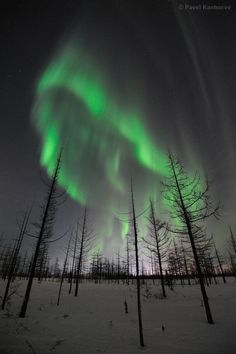 Russia's Northern Lights 1-21-12