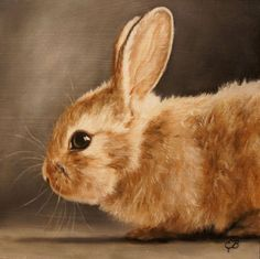 Bunny Oil Painting by Elizabeth Barrett