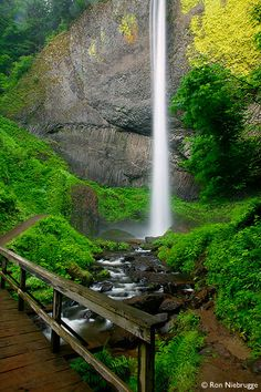 """Latourell Falls ~ Guy W. Talbot State Park ~ """"Guy W. Talbot State Park is a state park in the Columbia River Gorge, near Troutdale, Oregon. Although the main feature of the park is Latourell Falls, the parkland stretches west to the Crown Point State Scenic Corridor. Here the Historic Columbia River Highway descends from Crown Point via the Figure-Eight Loops, a series of horseshoe curves that 'develop distance'…"""" ~ photo by Ron Niebrugge en.wikipedia.org/..."""