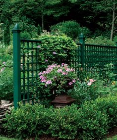 vegetable garden fence color ideas - Google Search Landscaping Ideas, Green Garden, Garden Walls, Privacy Fences, Side Yards, Vegetables Garden, Veg Garden, Garden Spaces, Garden Fences
