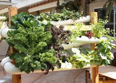 Space Saving Vertical Hydroponic garden systems! Uses 80% less water than conventional garden beds. Sweet!