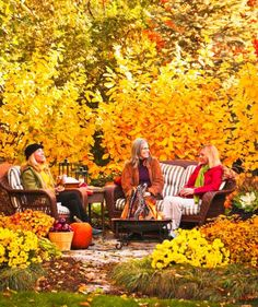 Fall fireworks: Plants that light up your landscape. See ideas here: http://www.midwestliving.com/garden/featured-gardens/colorful-fall-plants/