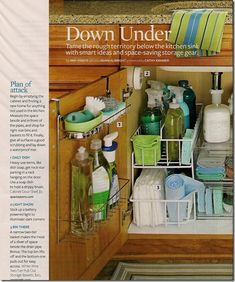 Organize under kitchen sink, but maybe pull out