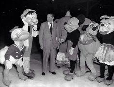Walt Disney The Man Of Dreams On Pinterest