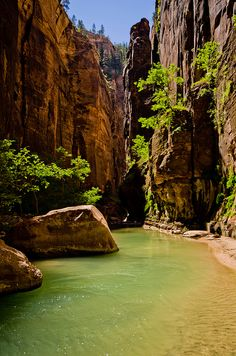The Narrows hike at Zion National Park