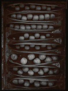 "Olivia Parker's ""Pods of Chance,"" from the Ephemera portfolio. Museum of Fine Arts, Boston."