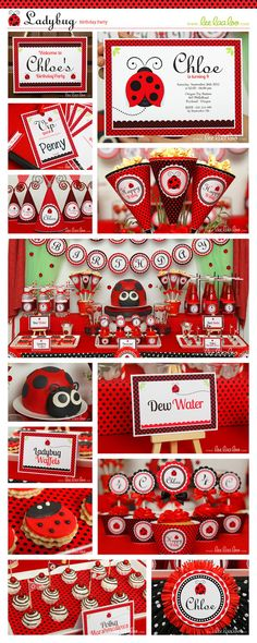Ladybug Birthday Party Invitation Personalized by LeeLaaLoo