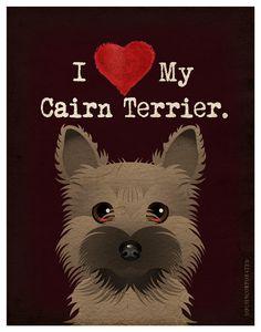 I Love My Cairn Terrier!
