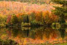 Coffin pond fall reflection.