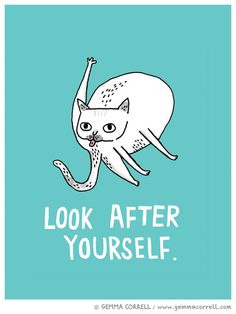 cats, stuff, funni, card, gemmacorrel, gemma correl, cat ladi, illustr, thing