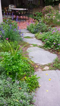 Bluestone slabs for a casual walkway design. Notice the stones and low plants in between the stones.
