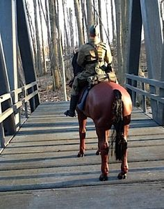 What an evocative, realistic scene. Superb camera placement and use of perpective, Angelo! At first glance, you'd swear this was a real horse and rider on a REAL bridge. (Photo: Angelo D'Annibale)