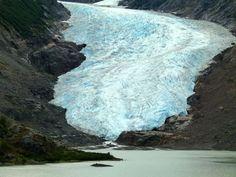 Bear Glacier on the way to Stewart, B.C. #YukonHo! bear