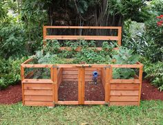 classy vegetable raised garden fence small   got a press kit for this thing called the Backyard Botanical ...