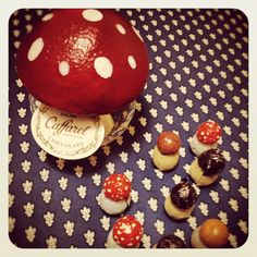 Mashroom chocolates