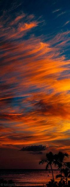 Waikiki Beach sunset in Honolulu, Hawaii • photo: thomas o'brien on Flickr It actually looks just like this.