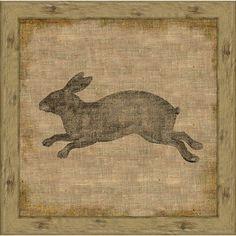 Garden Rabbit II Framed print