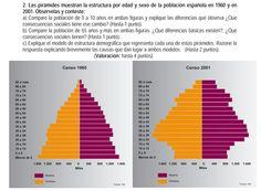 2010. Pirámide de población 1960-2001