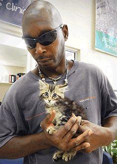 Man Cuts a Hole in his Truck to Save Kitten pickup trucks, cat, hero, save kitten