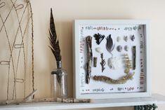shell, craft, shadowbox, beachcomb treasur, at the beach
