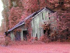 backroad barn