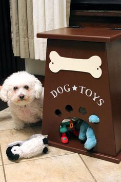 Cutest dog toy box. makes getting the toy out fun for the dog! I see a repurposing project...