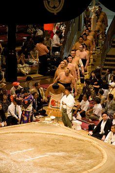 Sumo- Line of champions