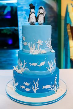 Very Cute wedding cake with an adorable penguin Bride and Groom!