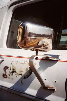 Cow Wing Mirror - William Eggleston