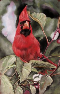 PanPastel Colors – Ultra Soft Artists' Painting Pastels