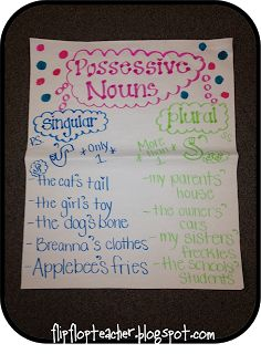 Possesive Noun Anchor Chart