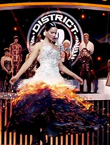Catching Fire: My favorite part, hands down.. That gorgeous wedding dress.. And Katniss as the Mockingjay