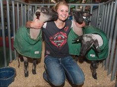 Shelby Teague, 16, of Fort Morgan, earned a rare trifecta at the State Fair over the weekend, having earned first place in showmanship in three species: hog, goat, and lamb. Fair officials couldn't recall that happening in recent memory. Photo by MIke Sweeney (Aug. 26, 2012)