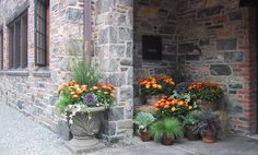 Autumn Container Garden