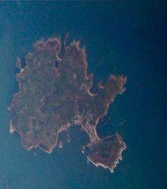 Tree-shaped island