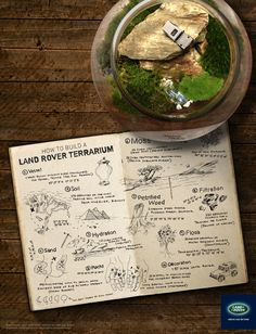 Everyone needs a chic terrarium at home. Learn how to create your very own Land Rover terrarium, complete with a mini #LandRover model inside.    Repin if you like this.    #terrarium #DIY