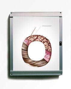 FloatHealth – Anatomy by Nuno Neto #typography #muscles #human #body