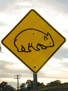 Here's a new one - Wombat Traffic Sign