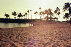 koolina, oahu, hawaii. shot on lomography film 100 iso with a canon ae-1.