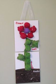 """Egg carton parts of a flower, would be difficult for the preschoolers to glue correctly but might be neat to """"build"""" with the egg cartons to make the parts of the flower."""