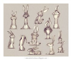 more rabbits!