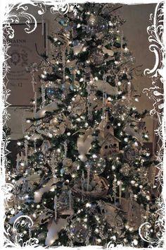 desert cottag, spray, christma decor, christma tree, beauti tree, christma magic, christmas trees, deserts, branches