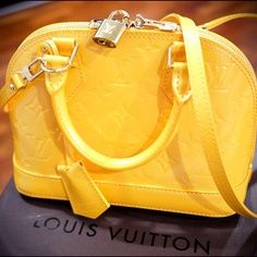 Louis Vuitton...my dream purse too
