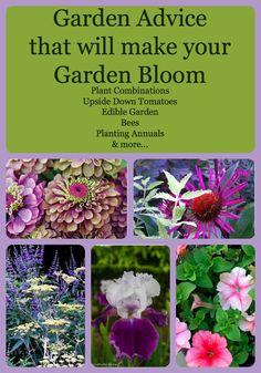 Garden Advice & Tips from Garden Charmers