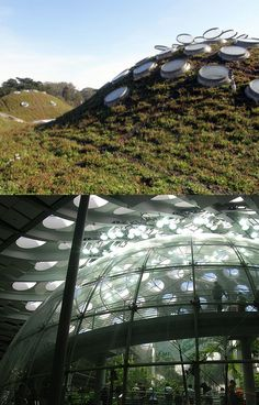 California Academy of Sciences - by Renzo Piano?