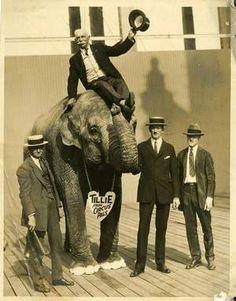 When elephants walked the streets of Terrace Park